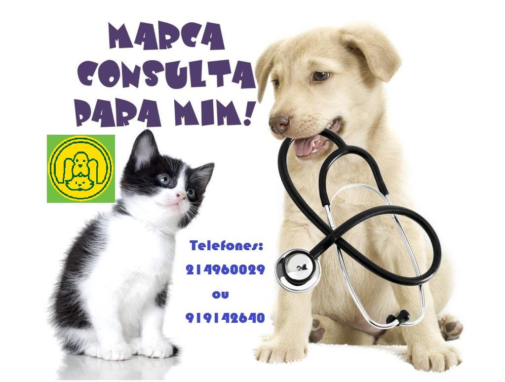 clinicaveterinaria